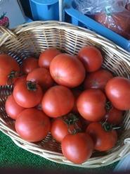 フルーツトマト(水切り)