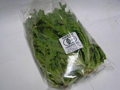 有機栽培-菊菜(春菊)